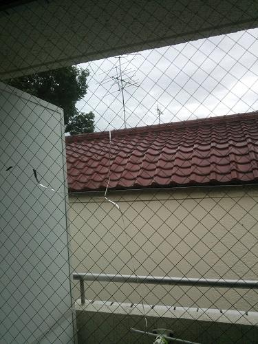 窓ガラスに突然ヒビが! 賃貸の場合修理代負担はどっちがするの?