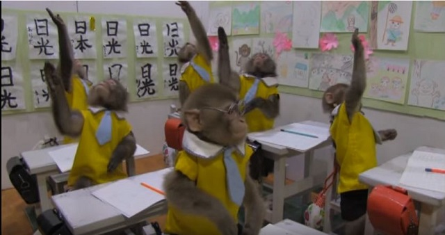 鬼怒川温泉周辺観光スポット のんびりしたい人へのおすすめ3選